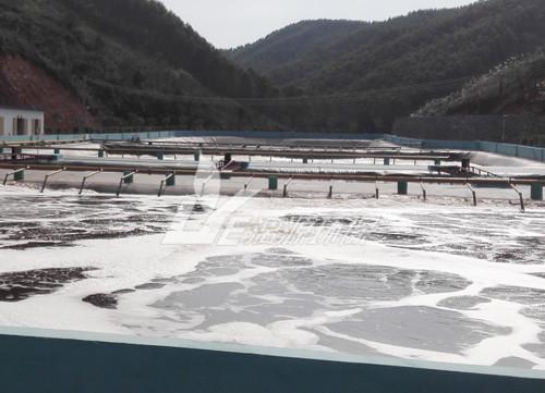 永州养猪场污水处理